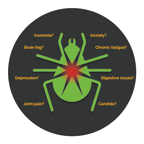 Lyme Disease Symptoms Westminster MD